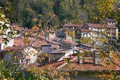 Cabin, House Styles, Gallery, Wood, Home Decor, Italia, Madeira, Homemade Home Decor, Roof Rack