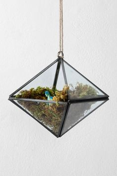 Geometric Terrarium from Urban Outfitters - Love love love this and buying - Putting AIrplants in it! Terrariums, Hanging Terrarium, Garden Terrarium, Hanging Planters, Magical Thinking, Modern Ceramics, Room Accessories, Antique Metal, Plant Holders