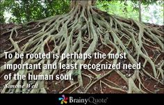 To be rooted is perhaps the most important and least recognized need of the human soul. - Simone Weil