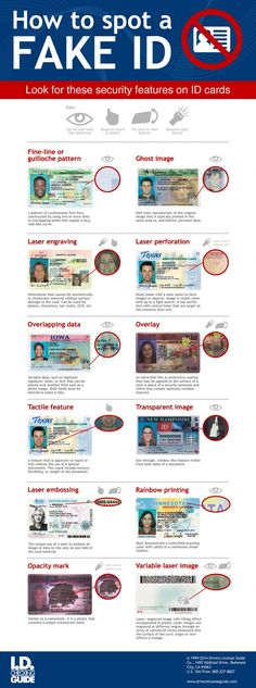 Learn how to spot a fake ID for your next signing. to learn more about making a great income as a loan signing agent! Notary Service, Mobile Notary, Bussiness Card, Birth Certificate, Virtual Assistant, Ways To Save Money, Business Opportunities, Infographic, Finance