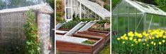 Cheap garden ideas: green your green thumb