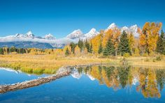 Photo by @andywcoleman // Another fall refection of the Grand Teton mountain range at a spot called Schwabacher Landing.  Most people will go to the main parking area at the end of the road, but there is a smaller parking area before then with some spectacular reflections along with a curvy beaver dam  #nps100 #findyourpark