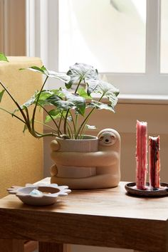 Shop Sloth Planter at Urban Outfitters today. Indoor Planters, Ceramic Planters, Hanging Planters, Succulent Planters, Indoor Gardening, Succulents Garden, Indoor Herbs, Wall Planters, Concrete Planters