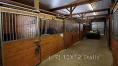 Gorgeous Equestrian Estate in Shediac Cape NB