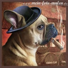 Dog Pets Hundeportrait Tierportrait Portraitzeichnung Tiermalerei Dogs- Portraits