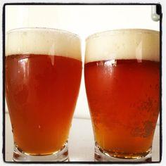 San Diego Super Yeast (malpas home brewery house strain)