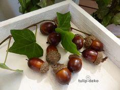 Kunstblumen & -pflanzen - 20 Stck. Eicheln, braun - ein Designerstück von…