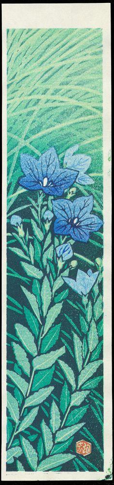 Kasamatsu Shiro: Broad Bell-Flower - Ohmi Gallery