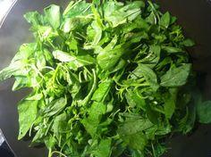Stir fry organic amaranth leaves