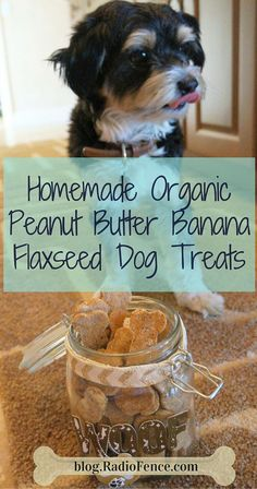 Homemade Organic Gluten-Free Peanut Butter Banana Flaxseed Dog Treats from The RadioFence.com Blog! Super simple and easy 4-step recipe that only takes 15 minutes to prep! Our dogs went crazy over them and won't eat regular dog treats anymore. Our family only uses organic ingredients so why shouldn't our dogs have the same healthy lifestyle?