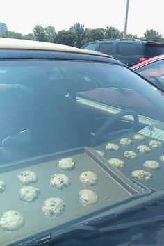 Don't waste high temperature in your automobile... but seriously, who would do this?