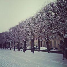 Ville de Nancy - Nancy sous la neige  Proposé par Marlène Cablé