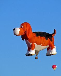 "36 Unique Hot Air Balloons ""This is Beagle Maximus who now resides in South Africa, formerly owned by Kenny Shumate of Orlando, FL"""