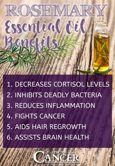 Rosemary is one of the most widely used herbs in the world, and those of us that love to cook have certainly used it in any number of dishes.  But, friends, not only is rosemary great for cooking… in essential oil form it also has some amazing health properties which range from protecting the liver to being an anti-diabetic and also anti-inflammatory. In this article Ty shares 6 simple ways to effectively use rosemary essential oil to benefit your health. Click on to image above read on...