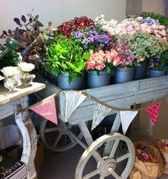 carretilla flores