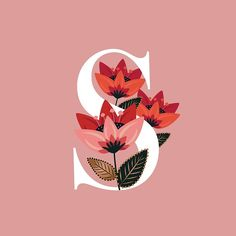 'Venice Floral Monogram S' by werlangpaper Powerpoint Background Design, Alphabet Wallpaper, Floral Letters, Name Art, Art Drawings Sketches, Monogram Letters, Framed Wall Art, Flower Art, Illustration