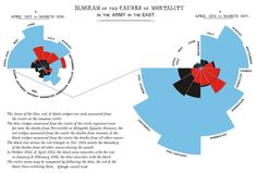 """Florence Nightingale's seminal infographic on the death of British soldiers. Later termed a """"Nightingale Coxcomb""""."""