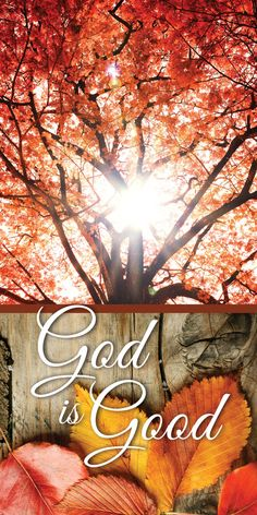 Thanksgiving Iphone Wallpaper, Church Banners Designs, Church Logo, Banner Stands, Outdoor Banners, Vinyl Banners, Vinyl Fabric, God Is Good