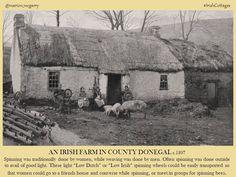An Irish farm in County Donegal