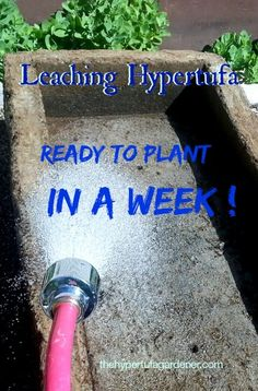 Short tutorial on leaching your new hypertufa pot. Watch the video and you will see how easy it is and how quickly it can be done. Ready to plant in a week after it cures.