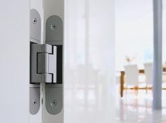 Tectus 3D Concealed Hinges come in a choice of ten finishes.  http://www.betterbuildinghardware.com/