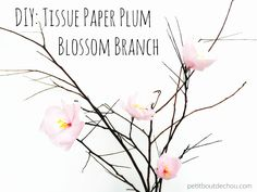 Spring time is finally coming but the weather is not really keen on following the calendar this year in Hong Kong! So in order to bring a bit of spring spirit in our houses, I have prepared this plum branches tutorial with tissue paper. You will see it is fairly simple and quick to do