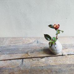 今朝の一杯#tumblerandflowers #flower #ikebana #椿 #いけばな #生け花 ? #活け花 ? #イケばな ! #wataraikebana #IKEBANAclass #いけばな教室 #monohanako #中里花子 by watarai_toru