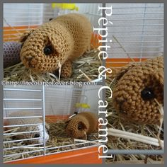 Adam asked for a crochet guinea pig, I don't know why but here's a pattern that should work...COBAYES AU CROCHET PATTERN BABY FREE PATTERN