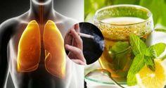 Cette boisson naturelle nettoiera vos poumons très rapidement ! Tous les fumeurs et ex-fumeurs doivent l'essayer ! | Santé+ Magazine - Le magazine de la santé naturelle