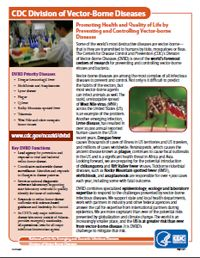 Division of Vector - Borne Diseases (DVBD)
