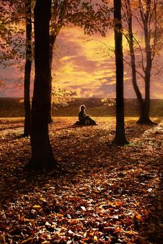 Oh how I wish that was ME! Alone, quiet, nothing but the autumn breeze and smell of fall in the air!
