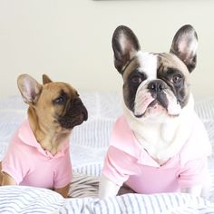 Huck and Gus rocking their pink...