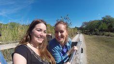 O Serengeti Safari é um tour privado do parque Busch Gardens e te deixa pertinho de animais do safari africano, como antílopes e girafas. E você também pode alimentar alguns deles. Orlando, Busch Gardens Tampa Bay, Travel Guide, Giraffes, Parks