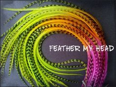 Items similar to 10 Tie Dye Fade Feather Extensions Whiting Grizzly Rooster Feathers X- Long inches Multi Colored Neon Nights on Etsy Colored Hair Extensions, Feather Extensions, Neon Nights, Summer Nights, Coloured Feathers, Rooster Feathers, Reptile Accessories, Feathered Hairstyles, Beauty Supply