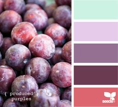 Design Seeds: Color Inspiration blog