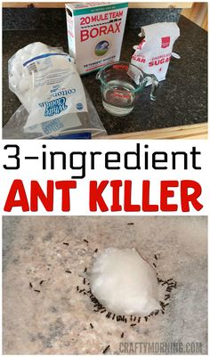 3 Ingredient Ant Killer Recipe Using borax! I tried this cause my kitchen sink was swarming with ants and within 24 hours not one was seen! Ant Killer Recipe, Homemade Ant Killer, Ant Traps Homemade, Safe Cleaning Products, Cleaning Recipes, Cleaning Hacks, Borax Cleaning, Cleaning Closet, Borax For Ants