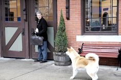 Hachiko: A Dog's Story Picture 12