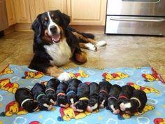 Happy proud momma!