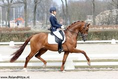 Kirsten Brouwer & Dancer (Vivaldi X Tango) Check for even more beautiful pictures: www.rolandhitze.nl