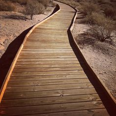 e. m. delacruz. boardwalk in Alburquerque Apps, Vacation, Iphone, Instagram Posts, Summer, Vacations, Summer Time, App, Holidays Music