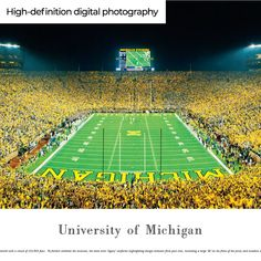 18 Best University Of Michigan Wolverines Panoramic Framed Decor Ideas Panoramic Pictures Panoramic Panoramic Print