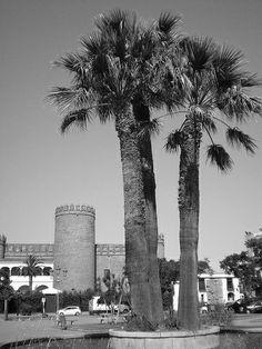 Y en el interior..El Alcázar de los Duques de Feria, impasible durante seis siglos. (foto en blanco y negro)