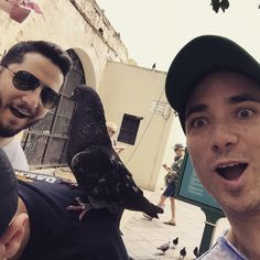 You should know that the bird is actually sitting on fabian's back #boyceavenue ❤