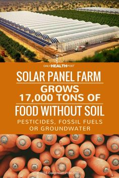 Solar Panel Farm Grows 17,000 Tons Of Food Without Soil, Pesticides, Fossil Fuels Or Groundwater via @dailyhealthpost