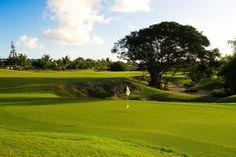 Caribbean Adventure Tours & Island Excursions at Sandals Resorts in the Bahamas, Saint Lucia, Antigua & Jamaica