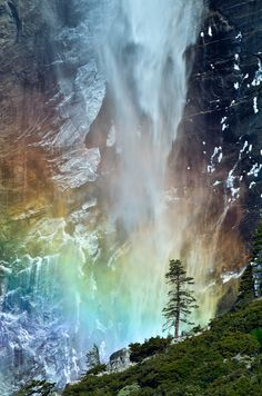 Bridal Fall at Yosemite: Instead of shooting the whole Bridal Fall, this time I tried to zoom in to get a closer look at the falling water, the small tree and the rainbow. (via flickr.com/mengzhonghua)