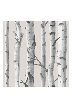 WallPops Birchtree Peel & Stick NuWallpaper by WallPops! on @HauteLook