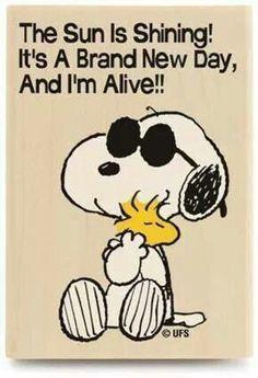 The Sun is Shining! ~ Snoopy