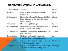 upper respiratory system drugs - Google Search