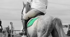 Show Jumping, Watch V, Horses, Photo And Video, Youtube, Summer, Collection, Summer Time, Summer Recipes